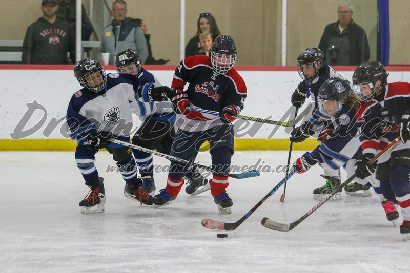 Gladwin Squirts Districts 020820 4471.jpg