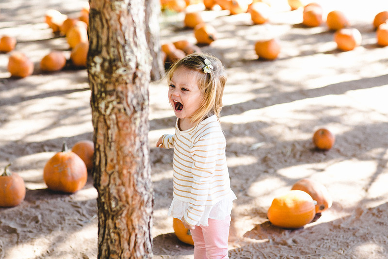 Lily - Pumpkin Patch 2013