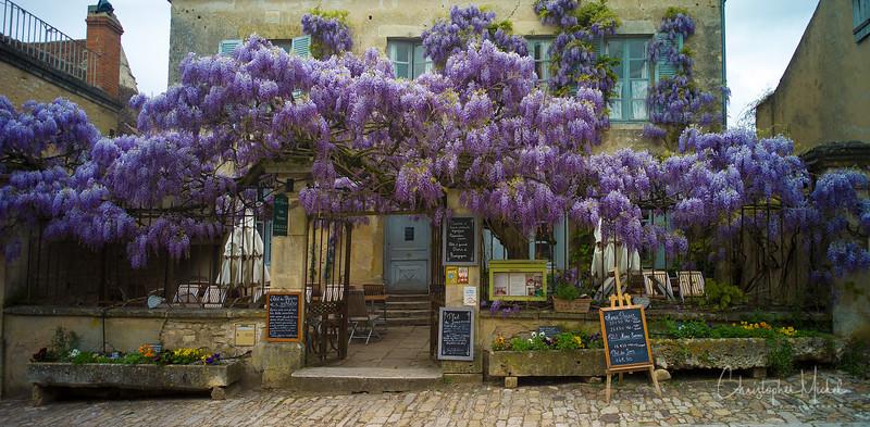 May092013_Marc Meneau L'Espérance_clos vougeot_7704.jpg