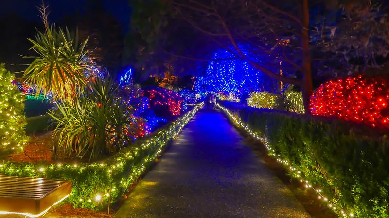 12-05-2019 Shore Acres Christmas Light Show (14 of 55).jpg