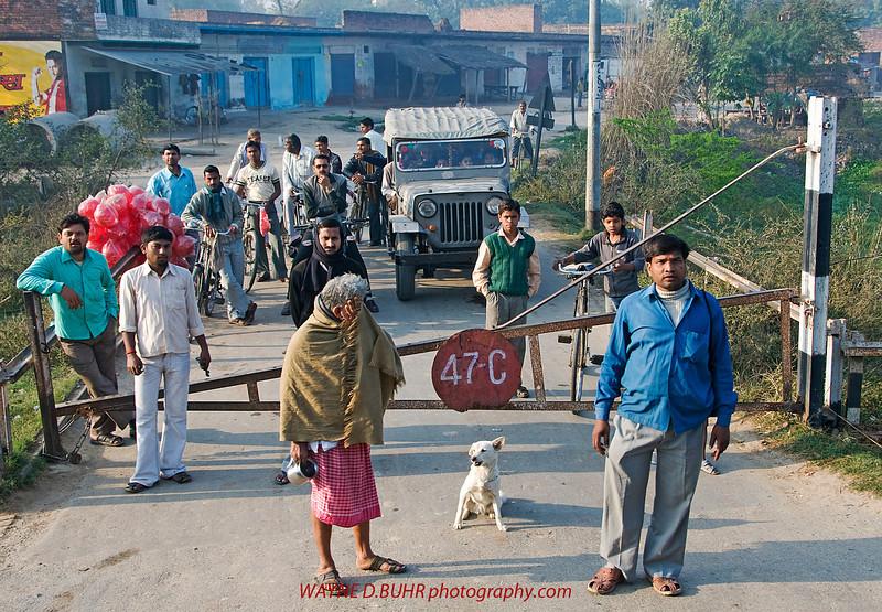 XH-INDIA-20100223A-137A.jpg