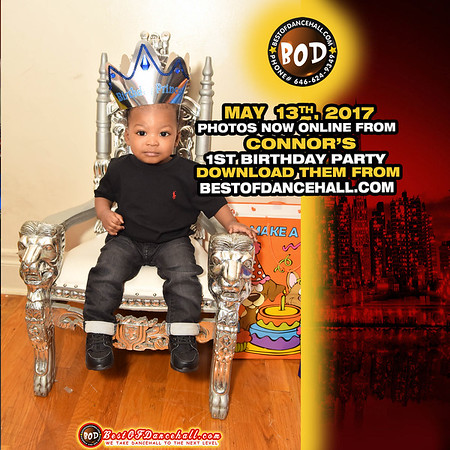 5-13-2017-BRONX-Connor's 1st Birthday Party