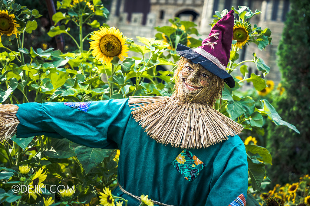 Gardens by the Bay – Sunflower Surprise / Scarecrow