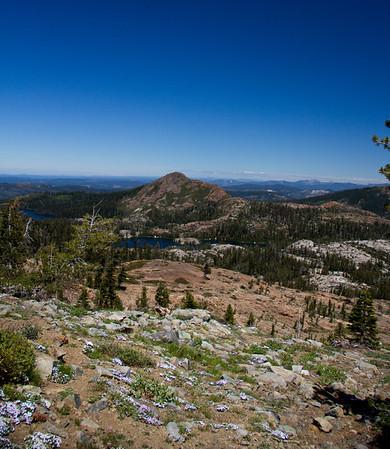 Grouse Ridge CA.