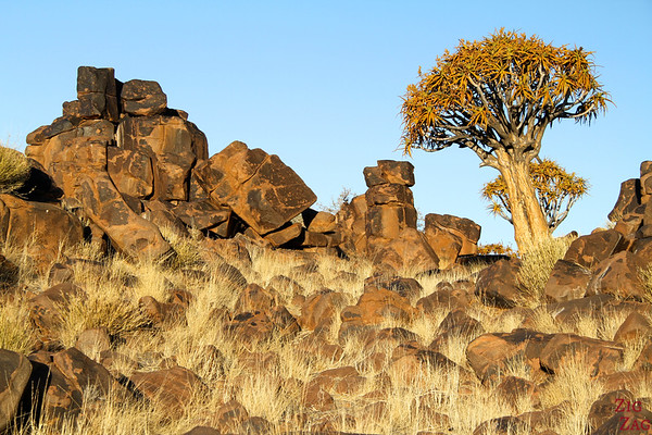 Giants playground and quiver tree, Namibia photo 1