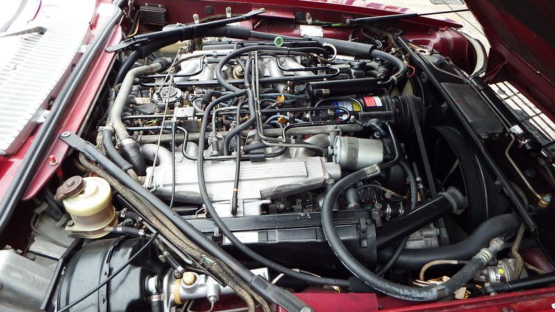 DSCF9718.JPG