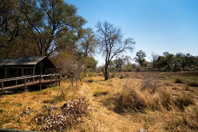2014-08Aug-Okavango Masters-15-Edit.jpg