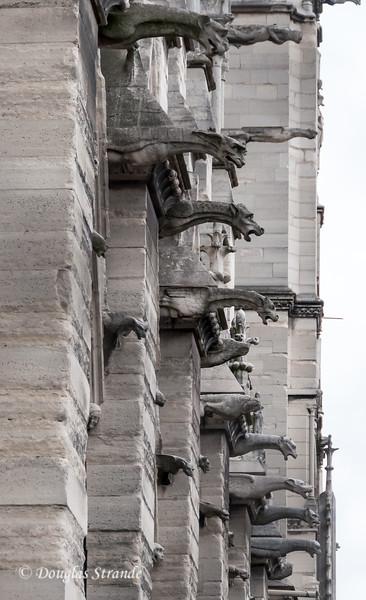 Gargoyles on the exterior of Notre Dame function a rain spouts