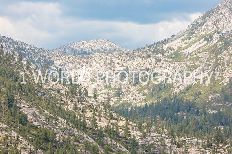 San Fran_Lake Tahoe Trip 2017-1638-100.jpg
