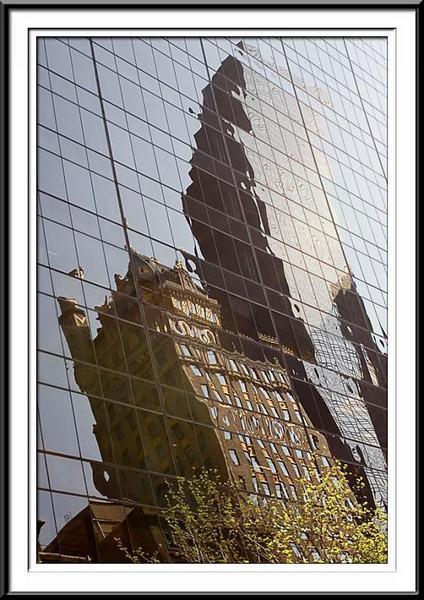 Reflections (59985397).jpg