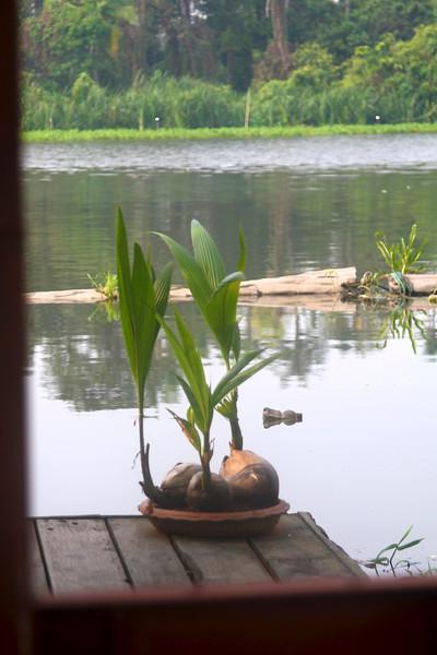 THAILAND 2012 CHIANG MAI-CHIANG RAI-BK