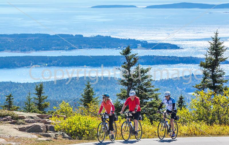 Acadia National Park - Climb Up Cadillac Mountain - Sojourn