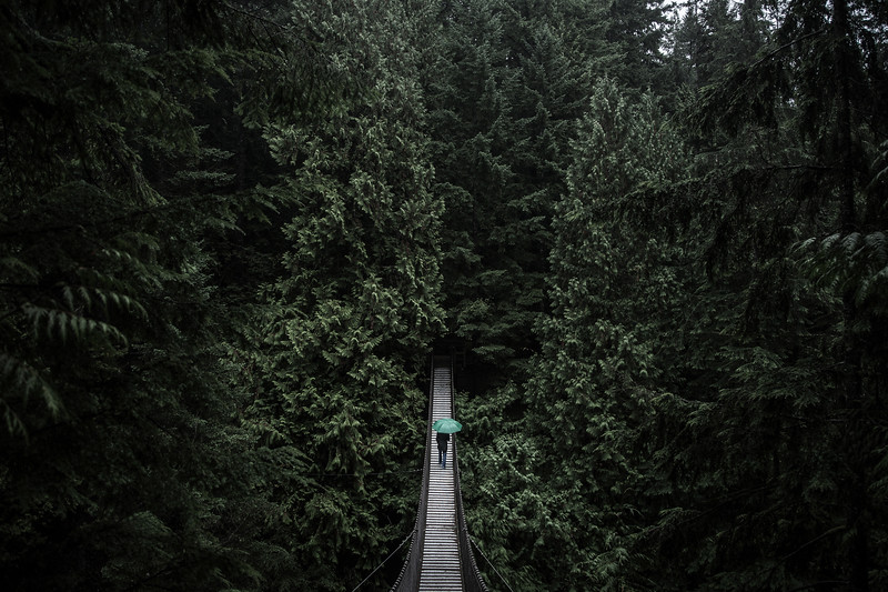 Lynn Canyon Suspension Bridge, Vancouver BC.jpg