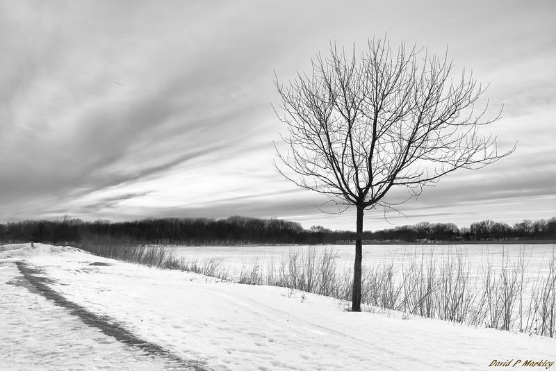 Icy Lake Edge