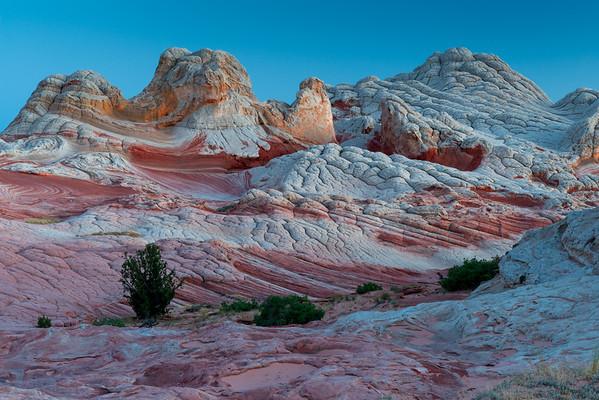 Desert & Southwest