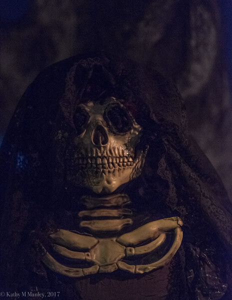 dayofthedead-9709.jpg