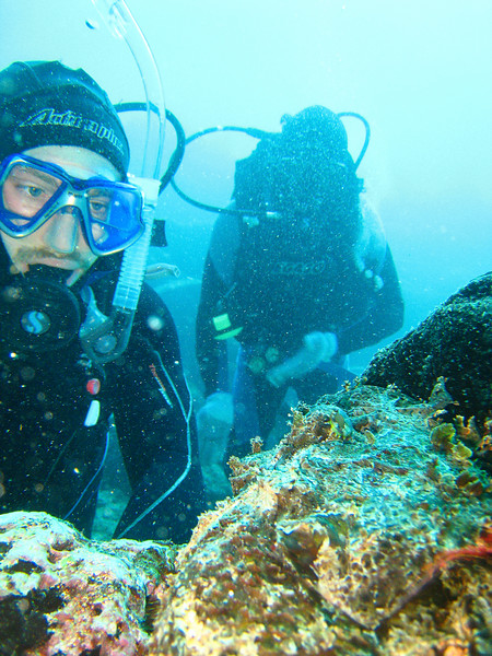 Diving in the Galapagos (310 of 392)