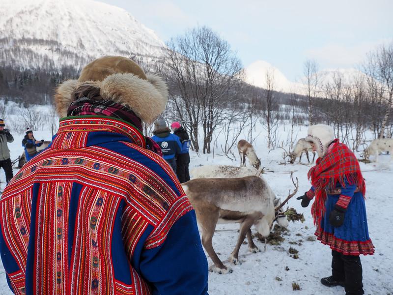 Sami herders in Northern Norway