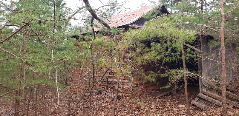 Tract 4 - old log structure