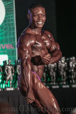 Pro Bodybuilding Finals