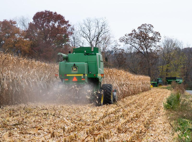 10-19-2020-harvest-4.jpg