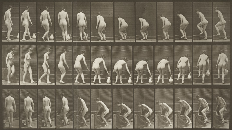Nude woman turning to ascend stairs (Animal Locomotion, 1887, plate 108)