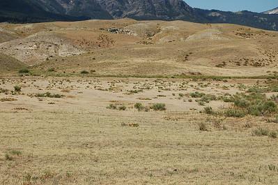 Yellowstone NP 2006 het park