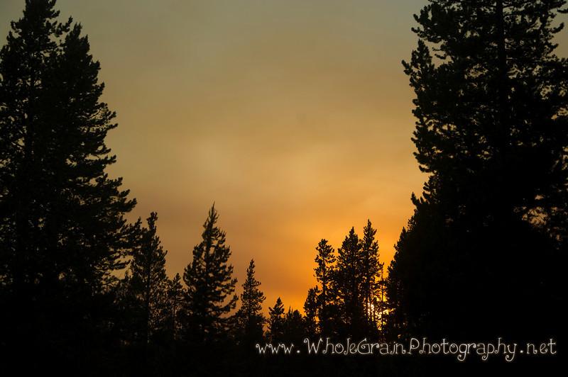 20100713_Yellowstone_2904_1.jpg