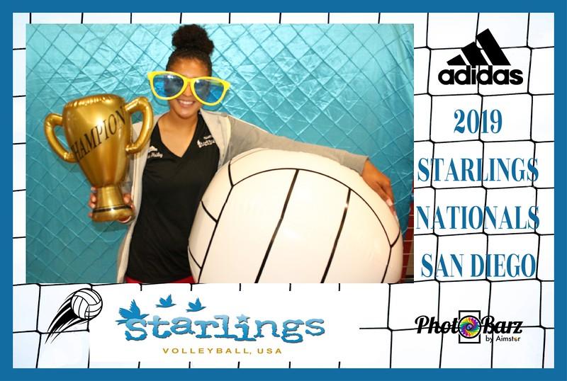 Starlings Volleyball (45).jpg