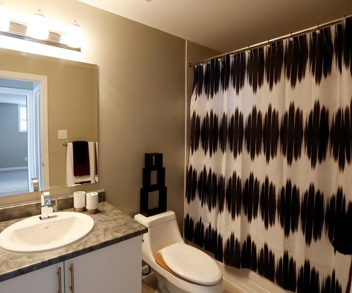 Valecraft Mann basement bathroom .jpg