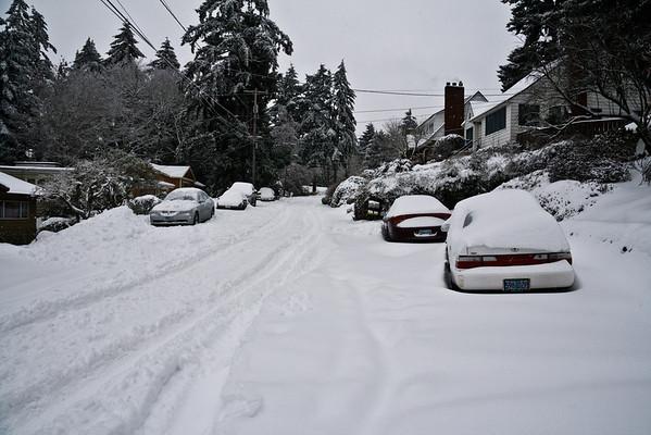 Snowpocalypse (2008)
