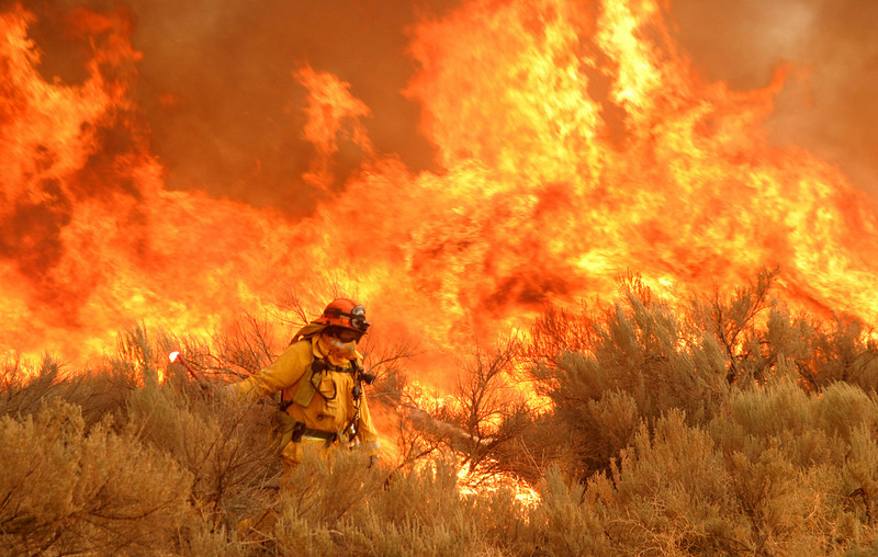 Crown Wildfire - Southern California