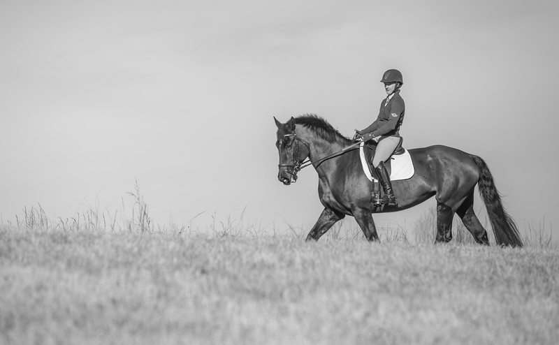 horse trials-100.jpg