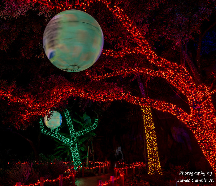 Houston-Zoo-Lights-3104.jpg