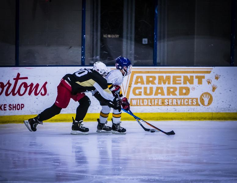 Bruins-27.jpg