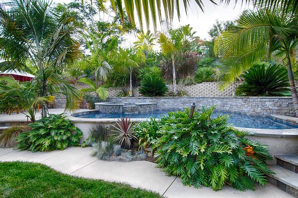 Carlsbad - Pool & Landscape Design