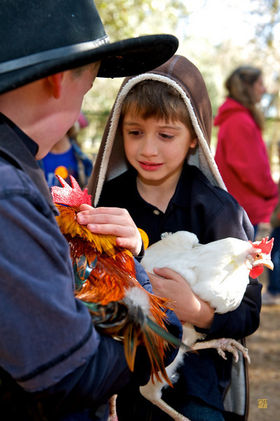 Second Grade Green Meadows Farm, February 25, 2010