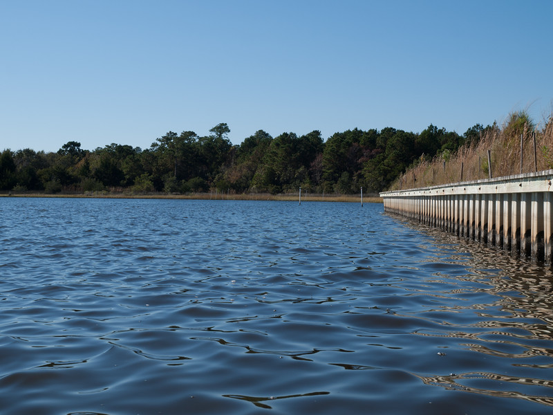 Hardened bulkhead on private property, adjacent, east, to living shoreline.
