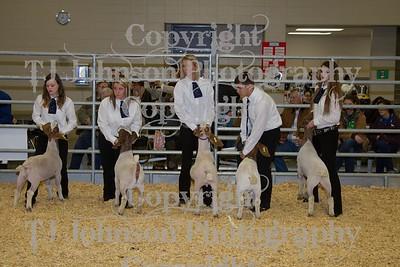 2014 KISD Livestock Show Goats Class 1