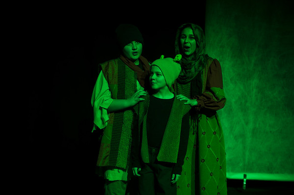 LCP Production- Shrek Jr.