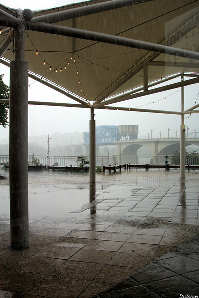 Tennessee Aquarium    Trapped by an afternoon deluge!