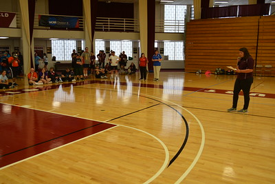 2016 Volleyball Qualifiers - Springfield College