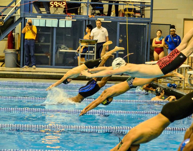 Swim Meet 11-09-13 (513 of 1544).jpg