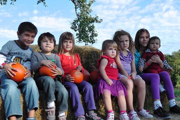 Barton Hill Farms Pumpkin Patch