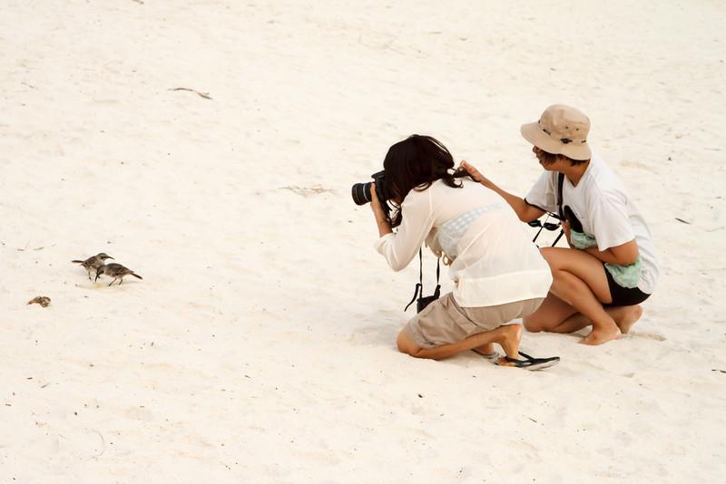 Yik Shi and Joan photographing Espanola Mockingbird at Gardner Bay, Espanola, Galapagos, Ecuador (11-21-2011) - 588.jpg