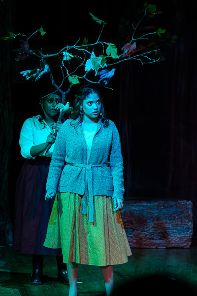 2018-03 Into the Woods Performance 0917.jpg