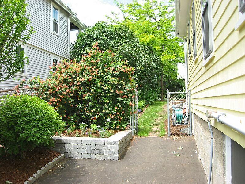 garden-2003-06-0161_std.jpg