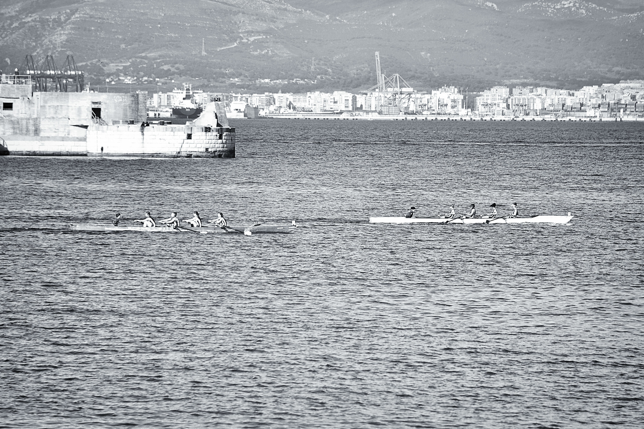 rowing-gov248