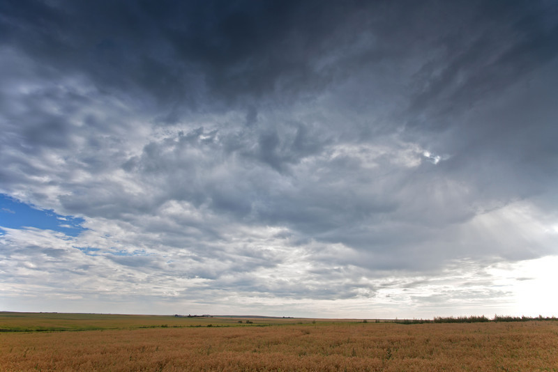 An empty prairie landscape under a huge Alberta sky.
