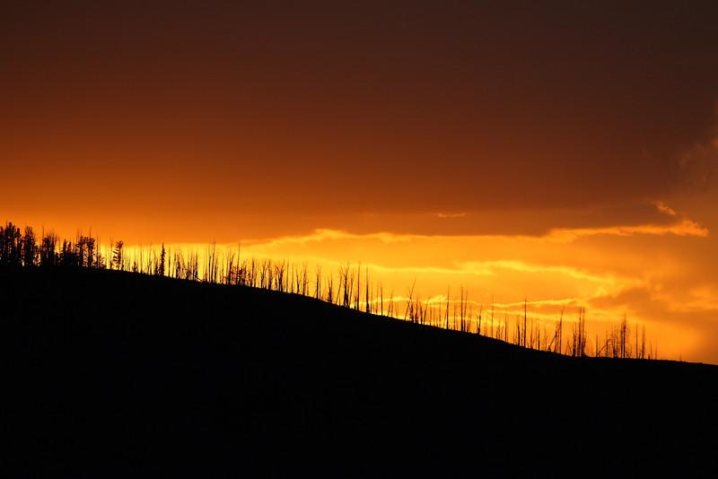 Yellowstone 064.JPG